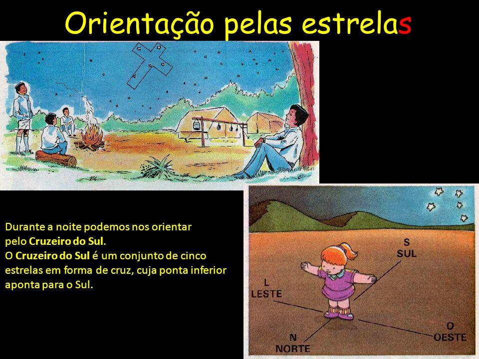 Orientação pelas estrelas Durante a noite podemos nos orientar pelo Cruzeiro do Sul.