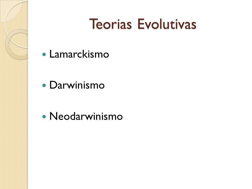Teorias Evolutivas Lamarckismo Darwinismo Neodarwinismo