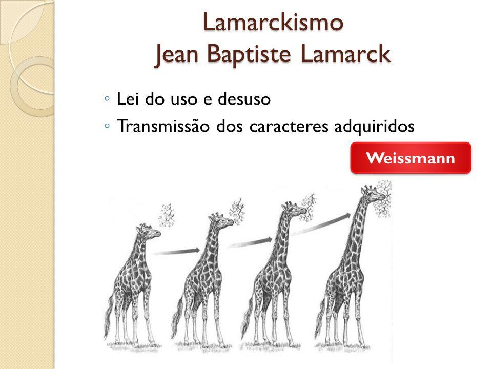 Lamarckismo Jean Baptiste Lamarck Lei do uso e desuso Transmissão dos caracteres adquiridos Weissmann