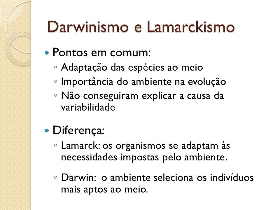 Darwinismo e Lamarckismo Pontos em comum: Adaptação das espécies ao meio Importância do ambiente na evolução Não conseguiram explicar a causa da variabilidade Diferença: Lamarck: os organismos se adaptam às necessidades impostas pelo ambiente.