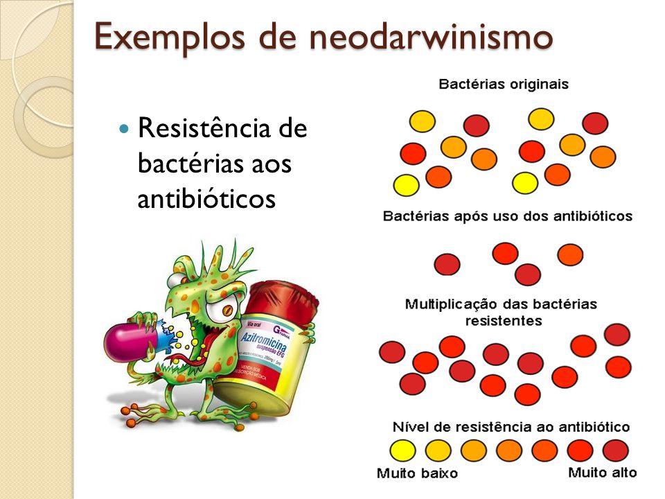 Resistência de bactérias aos antibióticos Exemplos de neodarwinismo