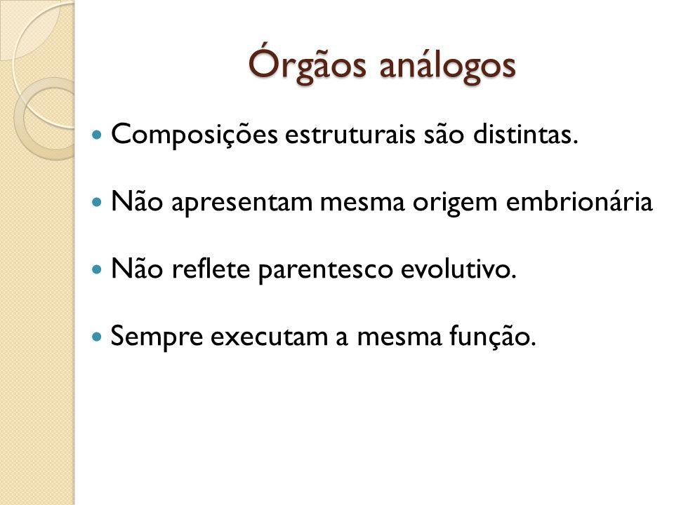 Órgãos análogos Composições estruturais são distintas.