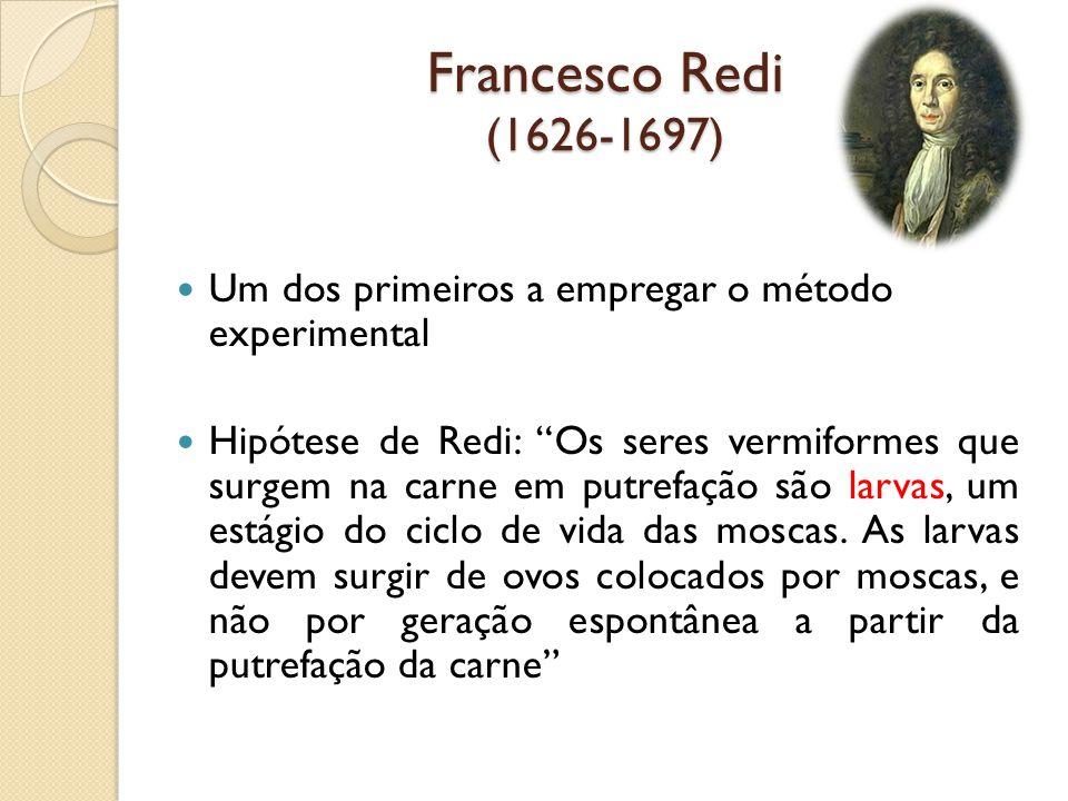 Francesco Redi (1626-1697) Um dos primeiros a empregar o método experimental larvas Hipótese de Redi: Os seres vermiformes que surgem na carne em putrefação são larvas, um estágio do ciclo de vida das moscas.
