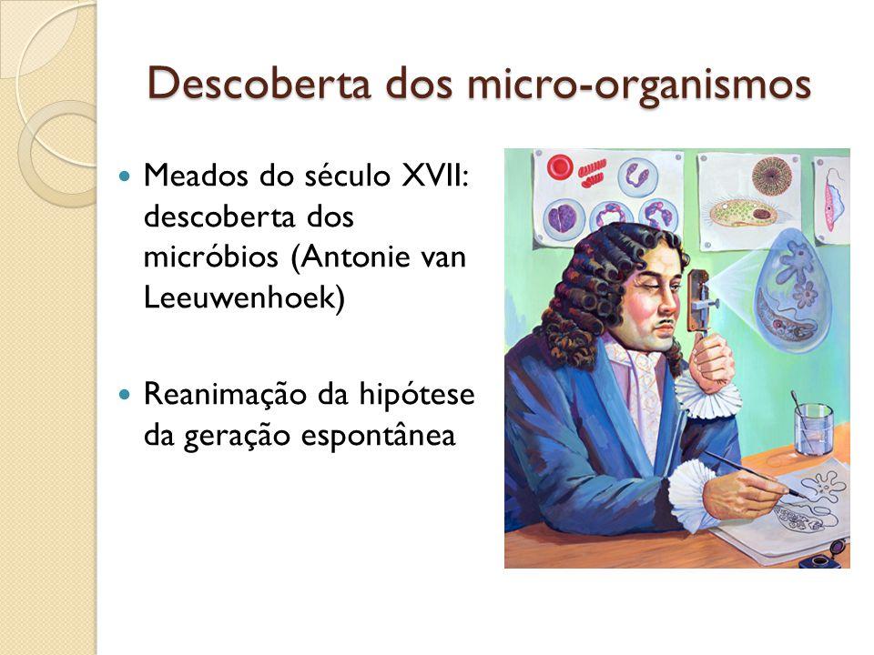 Descoberta dos micro-organismos Meados do século XVII: descoberta dos micróbios (Antonie van Leeuwenhoek) Reanimação da hipótese da geração espontânea