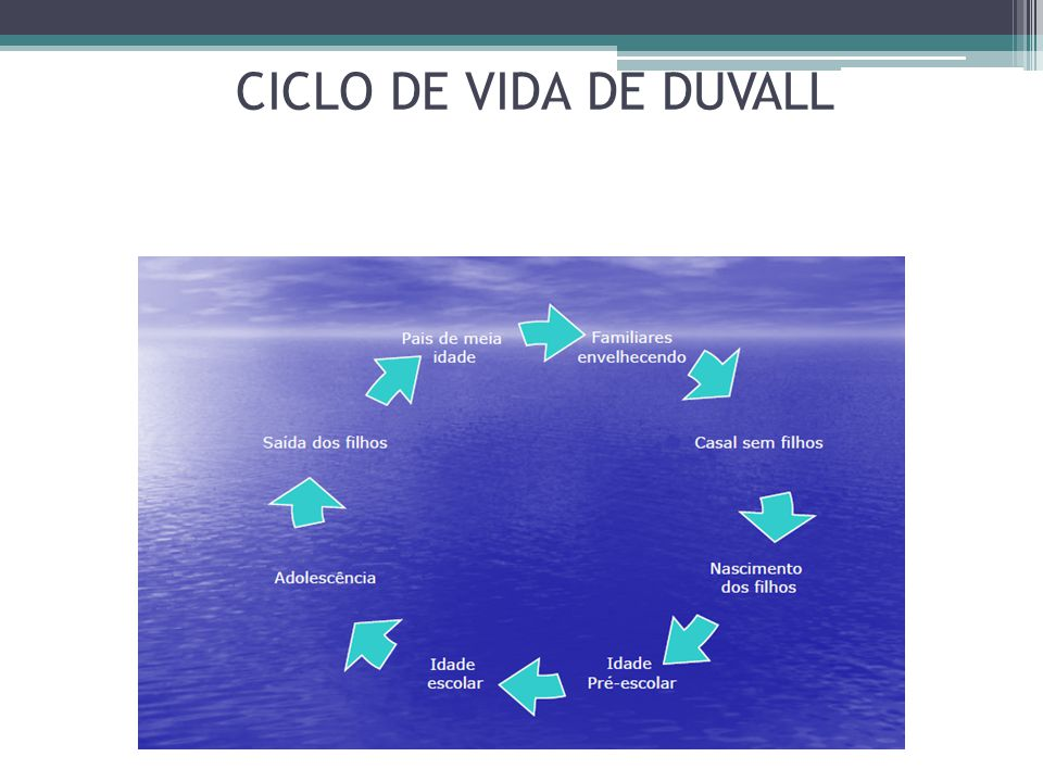 Sistematizando o FIRO 3.Durante o trabalho com inclusão, o mínimo que se espera de resultado é o comprometimento dos parceiros com a tentativa de melhoria e a presença às consultas;