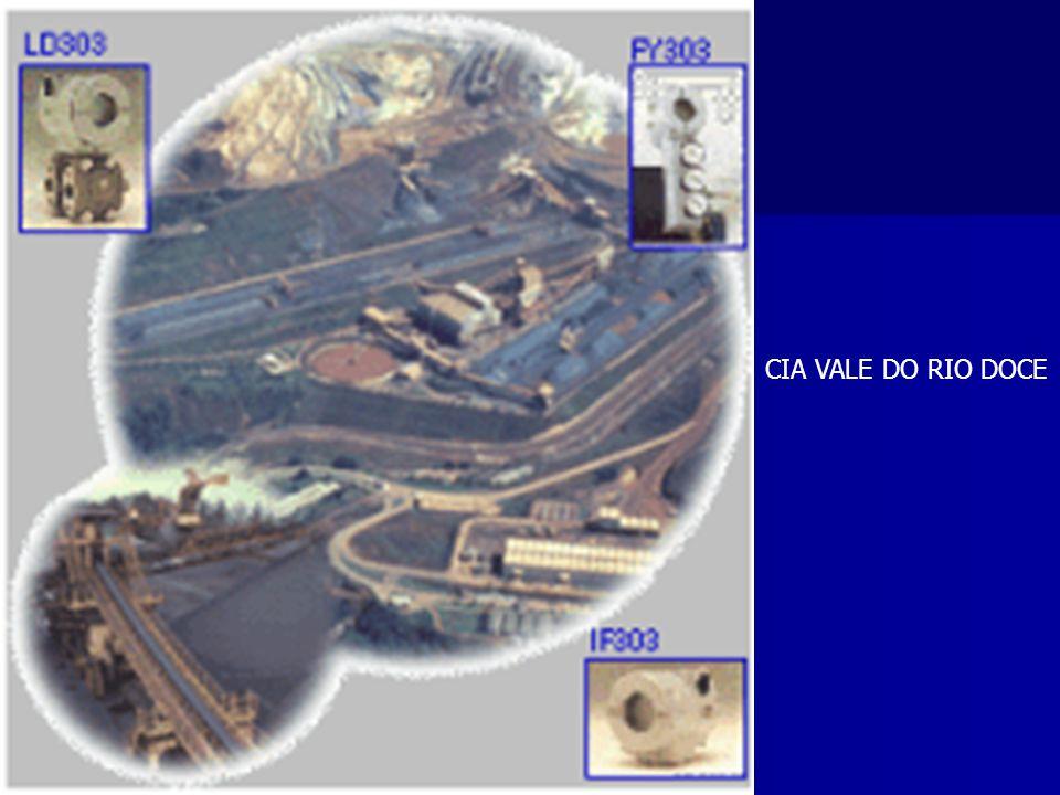 CIA VALE DO RIO DOCE