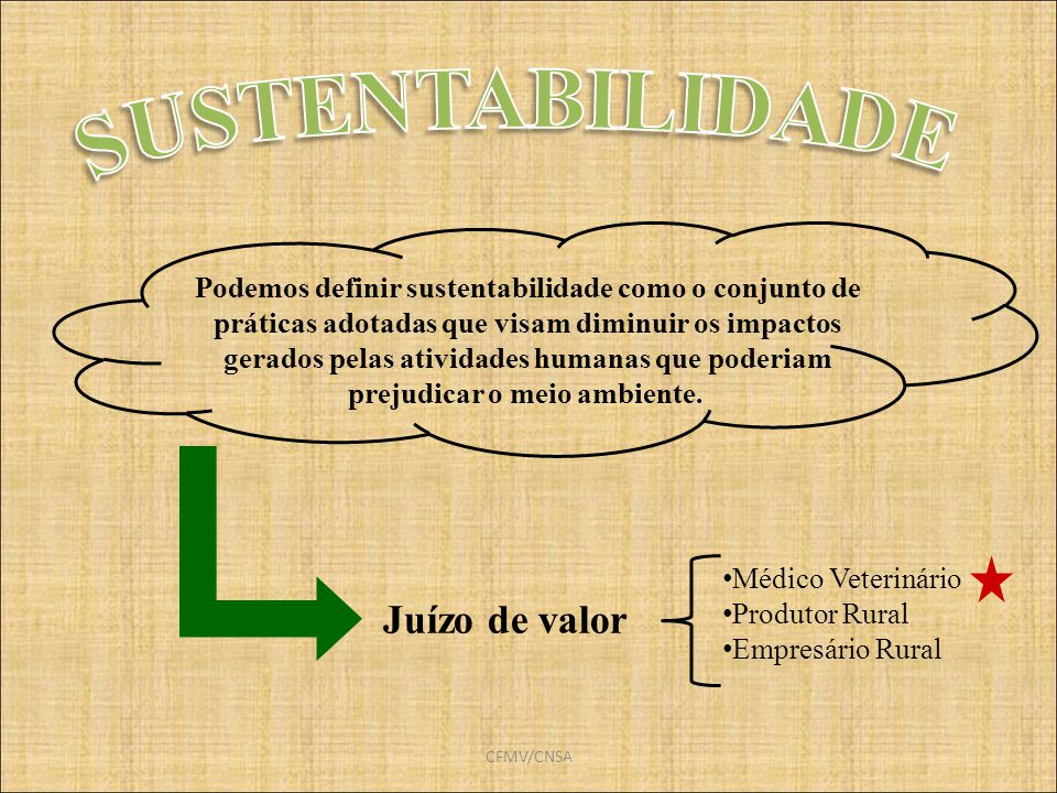 CFMV/CNSA Juízo de valor Médico Veterinário Produtor Rural Empresário Rural Podemos definir sustentabilidade como o conjunto de práticas adotadas que
