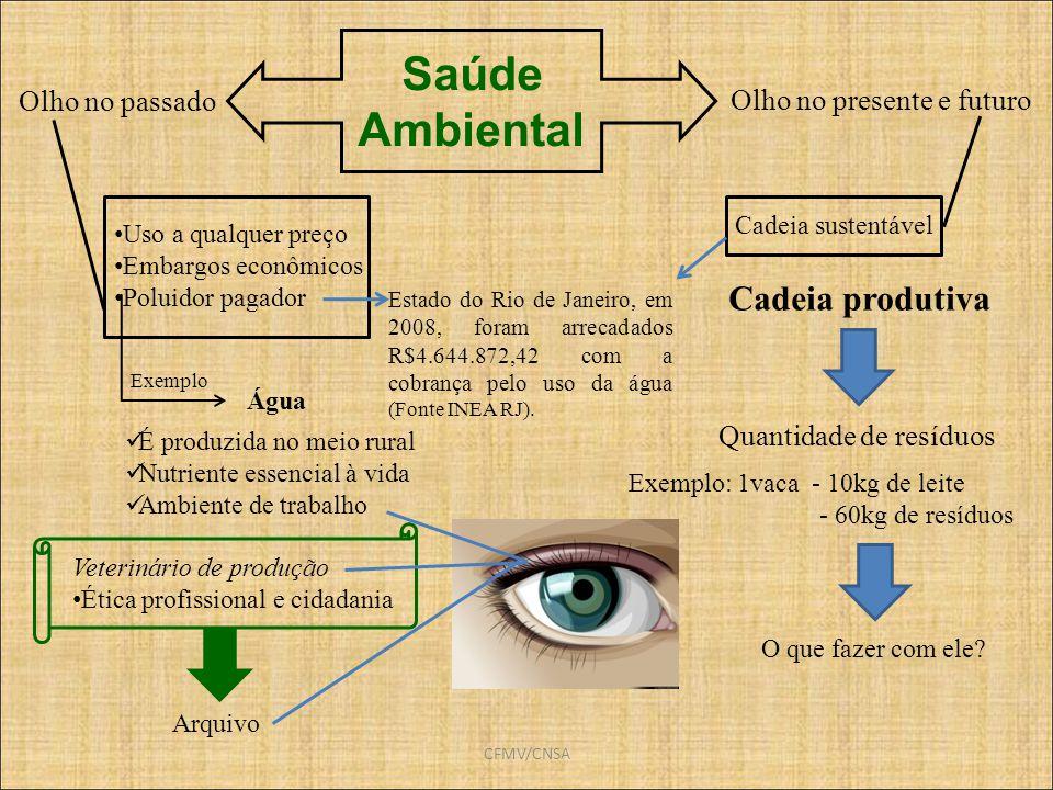 CFMV/CNSA Saúde Ambiental Olho no passado Olho no presente e futuro Cadeia produtiva Quantidade de resíduos Exemplo: 1vaca - 10kg de leite - 60kg de r