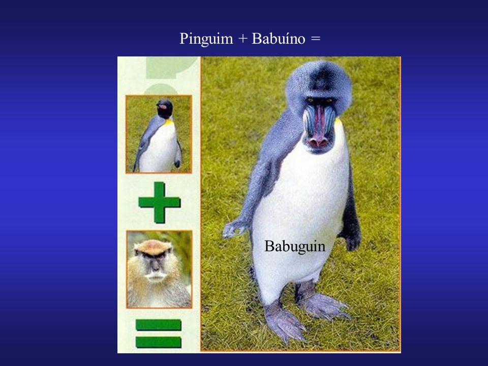 Pinguim + Babuíno = Babuguin