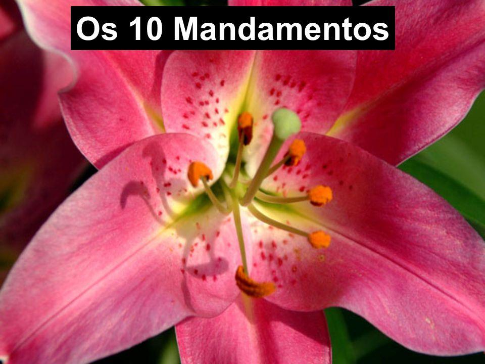 Os 10 Mandamentos