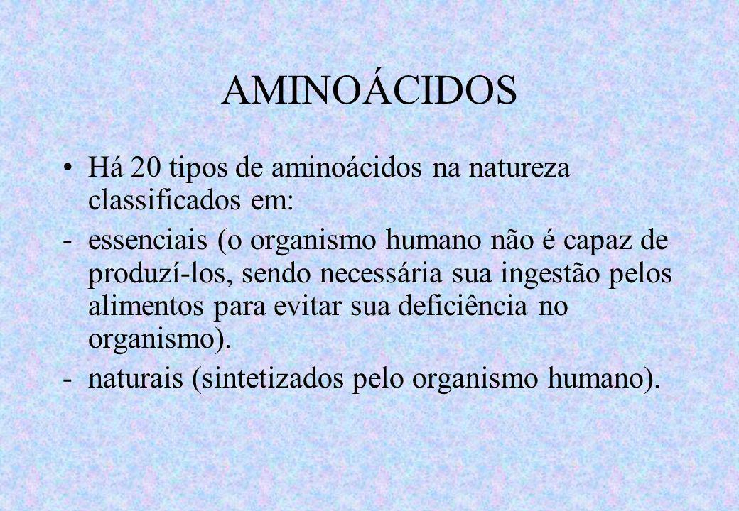 AMINOÁCIDOS Há 20 tipos de aminoácidos na natureza classificados em: -essenciais (o organismo humano não é capaz de produzí-los, sendo necessária sua ingestão pelos alimentos para evitar sua deficiência no organismo).