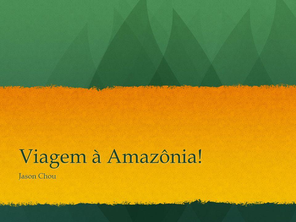 Viagem à Amazônia! Jason Chou