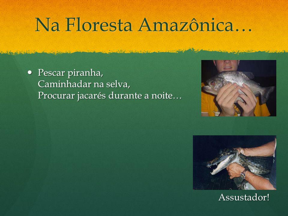 Na Floresta Amazônica… Pescar piranha, Caminhadar na selva, Procurar jacarés durante a noite… Pescar piranha, Caminhadar na selva, Procurar jacarés du