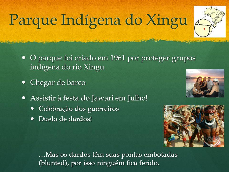 Parque Indígena do Xingu O parque foi criado em 1961 por proteger grupos indígena do rio Xingu O parque foi criado em 1961 por proteger grupos indígen