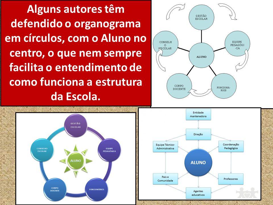 Alguns autores têm defendido o organograma em círculos, com o Aluno no centro, o que nem sempre facilita o entendimento de como funciona a estrutura d