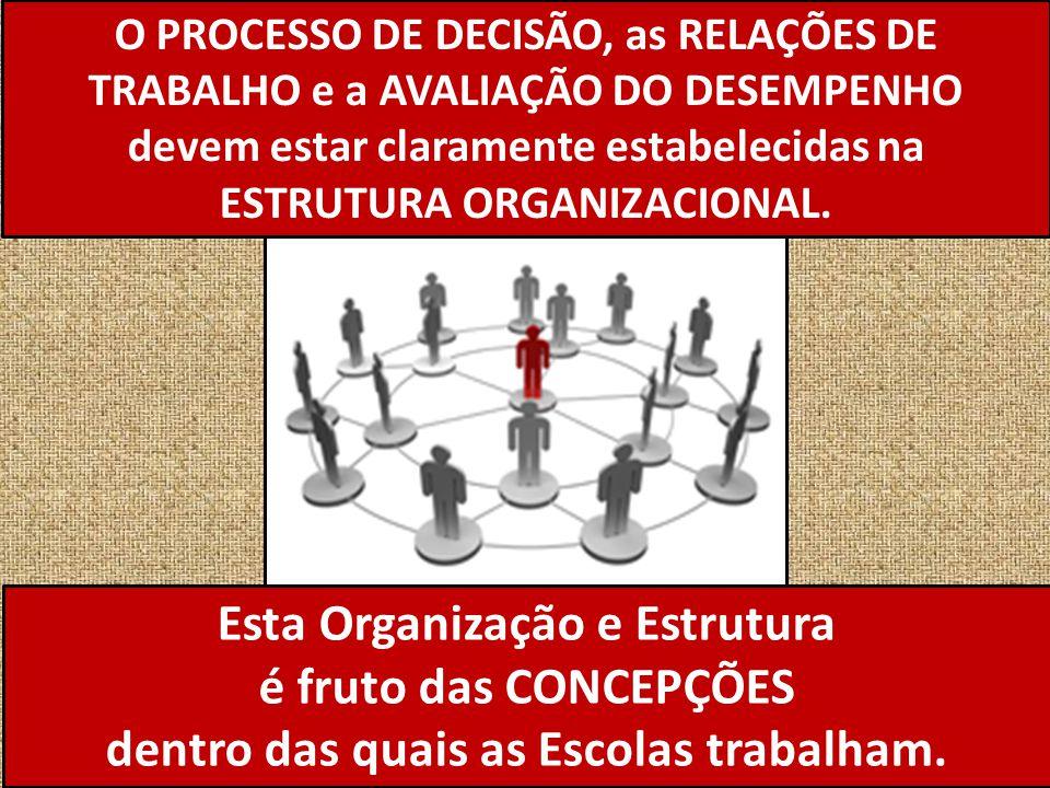 O PROCESSO DE DECISÃO, as RELAÇÕES DE TRABALHO e a AVALIAÇÃO DO DESEMPENHO devem estar claramente estabelecidas na ESTRUTURA ORGANIZACIONAL. Esta Orga