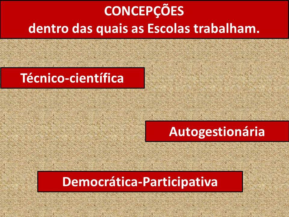 CONCEPÇÕES dentro das quais as Escolas trabalham. Técnico-científica Autogestionária Democrática-Participativa