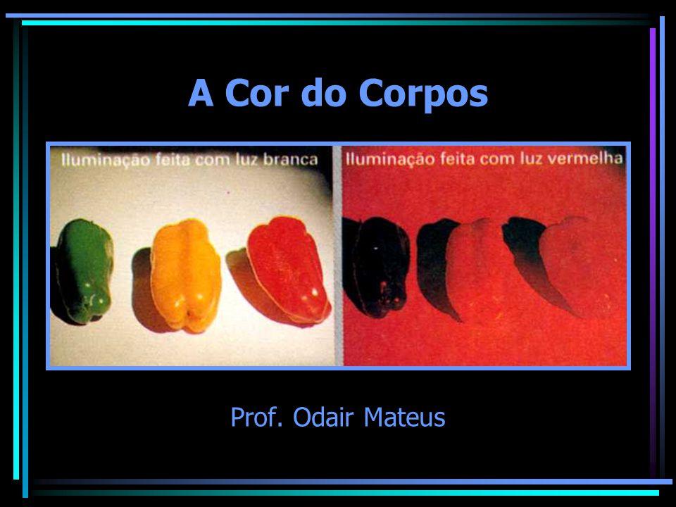 A Cor do Corpos Prof. Odair Mateus