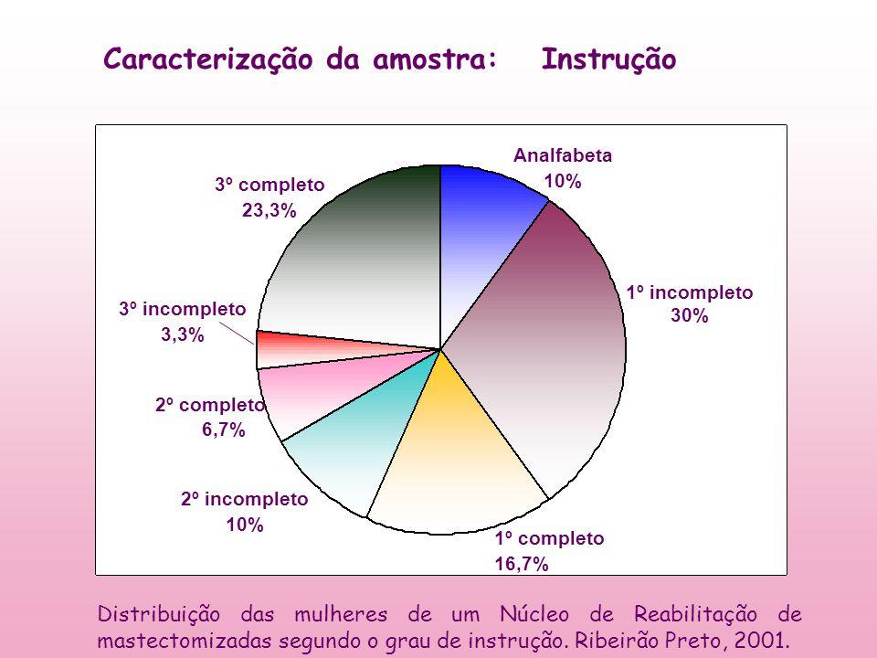 Instrução Analfabeta 10% 1º incompleto 30% 1º completo 16,7% 2º incompleto 10% 2º completo 6,7% 3º completo 23,3% 3º incompleto 3,3% Caracterização da