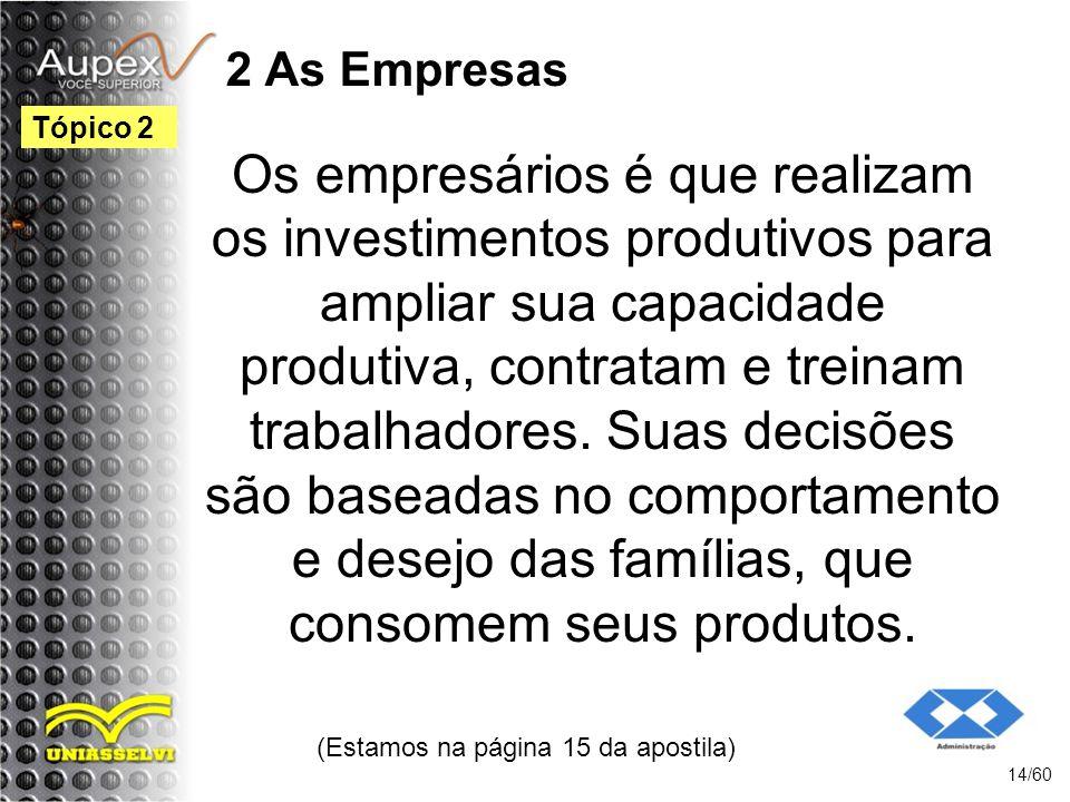 2 As Empresas Os empresários é que realizam os investimentos produtivos para ampliar sua capacidade produtiva, contratam e treinam trabalhadores. Suas