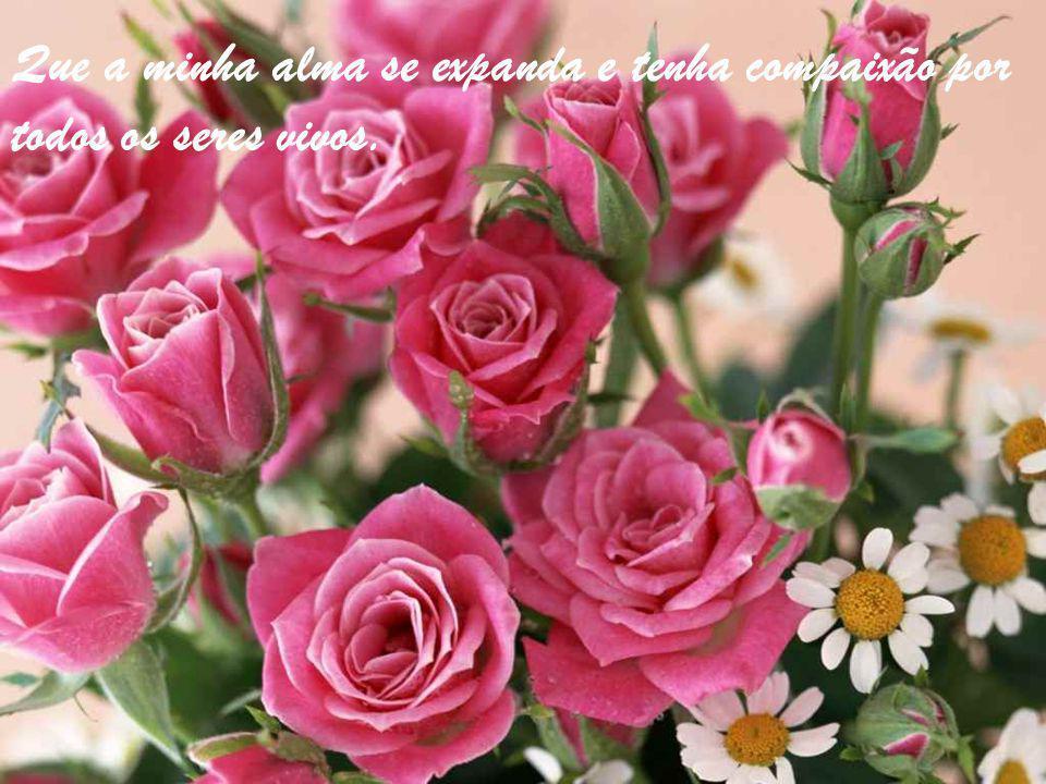 Que a minha alma se expanda e tenha compaixão por todos os seres vivos.