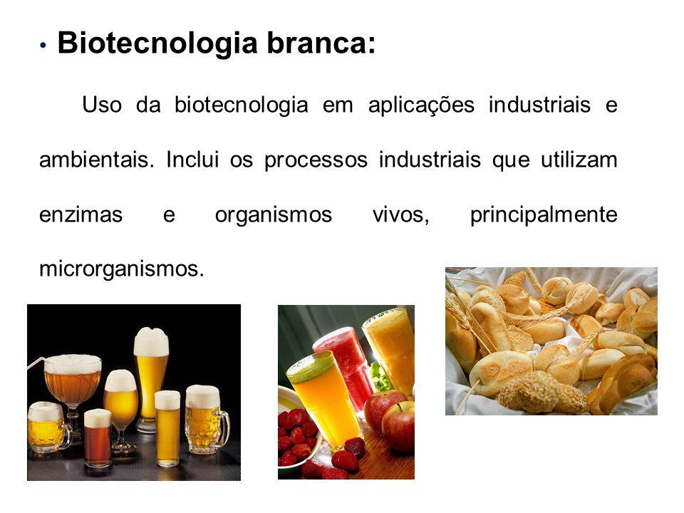 Biotecnologia branca: Uso da biotecnologia em aplicações industriais e ambientais. Inclui os processos industriais que utilizam enzimas e organismos v
