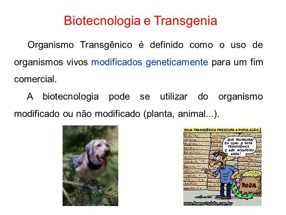 Biotecnologia e Transgenia Organismo Transgênico é definido como o uso de organismos vivos modificados geneticamente para um fim comercial. A biotecno