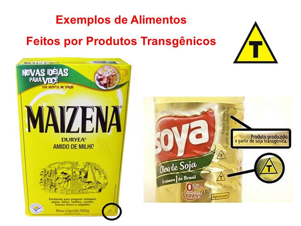 Exemplos de Alimentos Feitos por Produtos Transgênicos