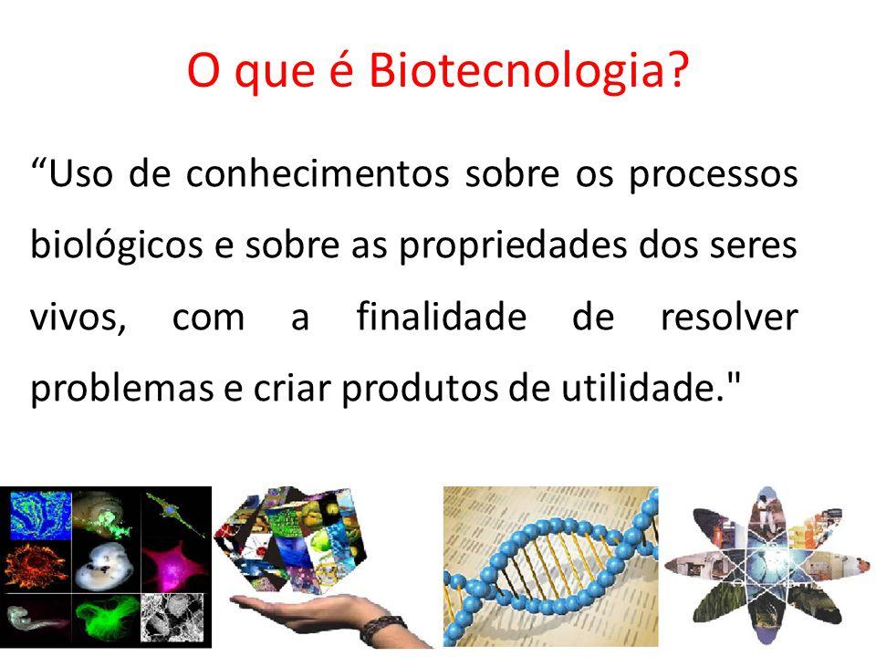 O que é Biotecnologia? Uso de conhecimentos sobre os processos biológicos e sobre as propriedades dos seres vivos, com a finalidade de resolver proble