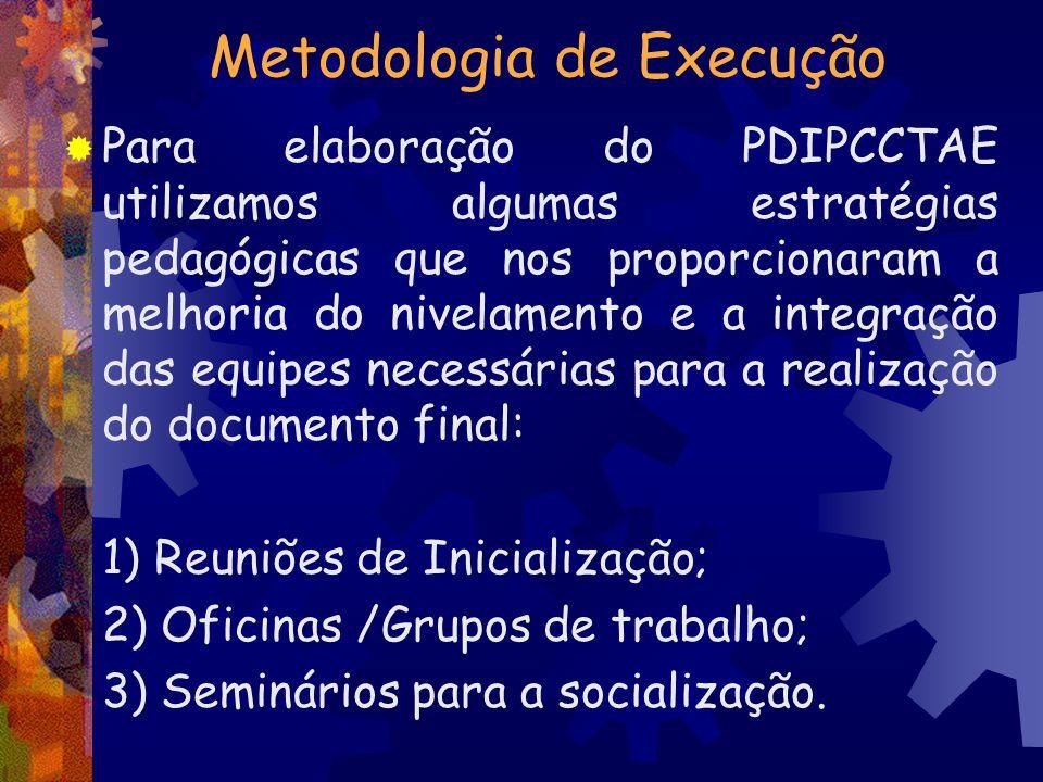 Metodologia de Execução Para elaboração do PDIPCCTAE utilizamos algumas estratégias pedagógicas que nos proporcionaram a melhoria do nivelamento e a i
