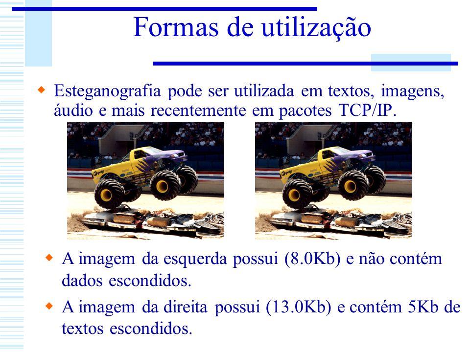 Formas de utilização Esteganografia pode ser utilizada em textos, imagens, áudio e mais recentemente em pacotes TCP/IP. A imagem da esquerda possui (8