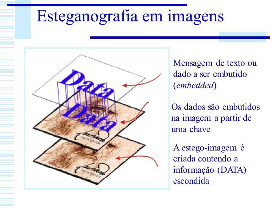 Esteganografia em imagens Mensagem de texto ou dado a ser embutido (embedded) Os dados são embutidos na imagem a partir de uma chave A estego-imagem é