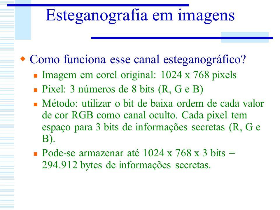 Esteganografia em imagens Como funciona esse canal esteganográfico? Imagem em corel original: 1024 x 768 pixels Pixel: 3 números de 8 bits (R, G e B)