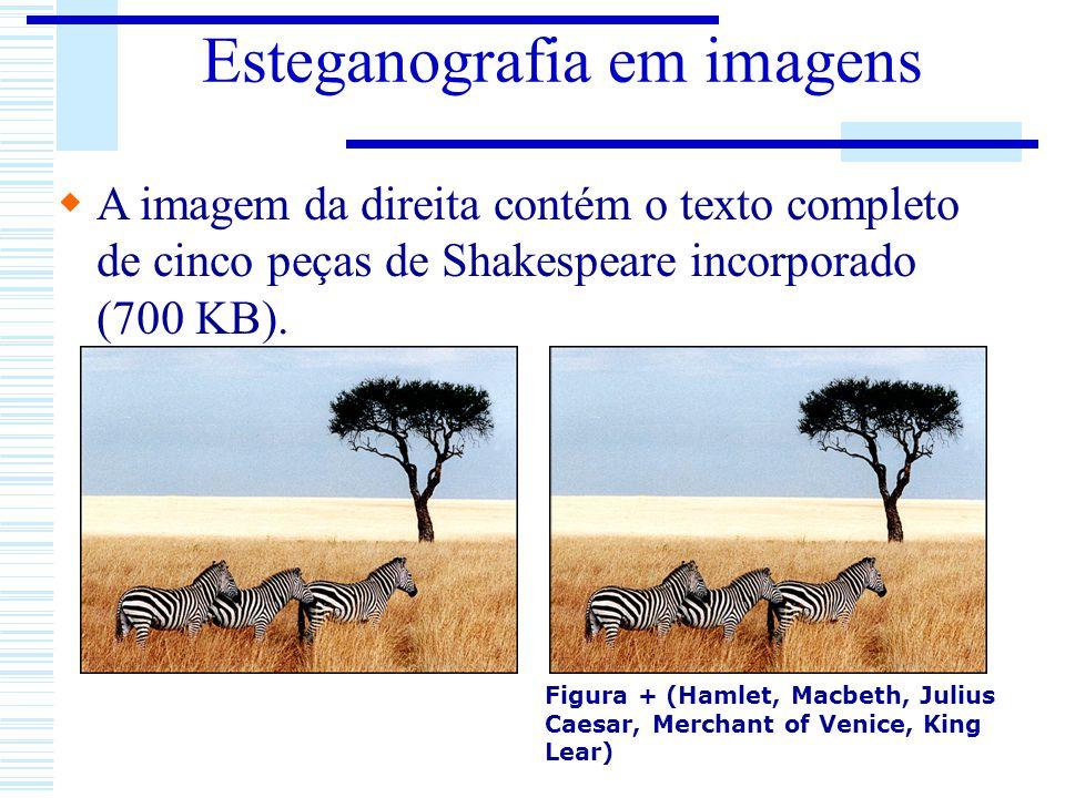 Esteganografia em imagens A imagem da direita contém o texto completo de cinco peças de Shakespeare incorporado (700 KB). Figura + (Hamlet, Macbeth, J