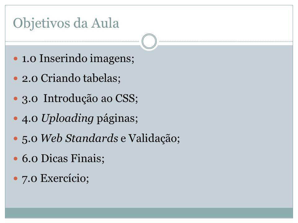 Objetivos da Aula 1.0 Inserindo imagens; 2.0 Criando tabelas; 3.0 Introdução ao CSS; 4.0 Uploading páginas; 5.0 Web Standards e Validação; 6.0 Dicas F