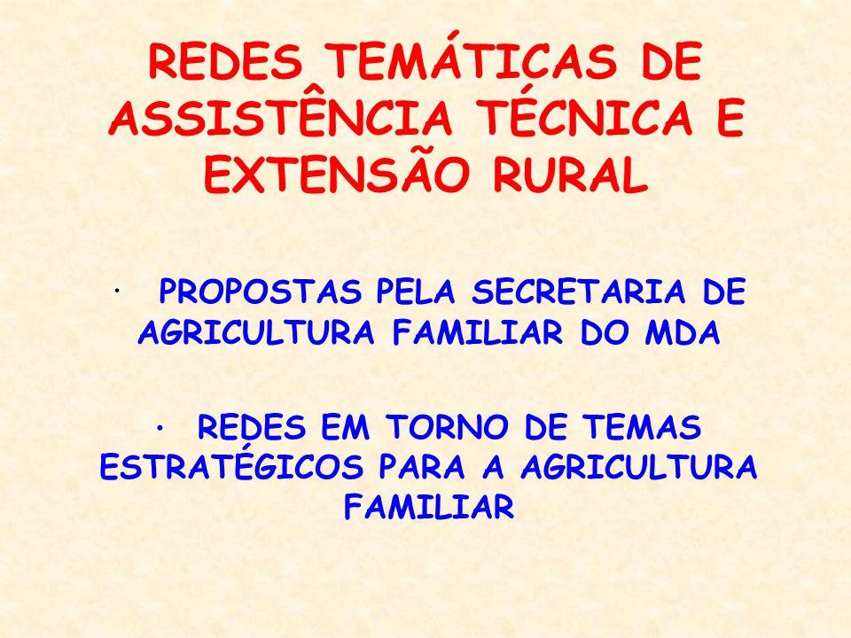 REDES TEMÁTICAS Agroecologia Agroindústria Comercialização Crédito e Seguro Formação dos agentes de ATER Leite Produtos e mercados diferenciados Metodologias participativas de ATER Turismo Rural Biodiesel Diversificação da fumicultura