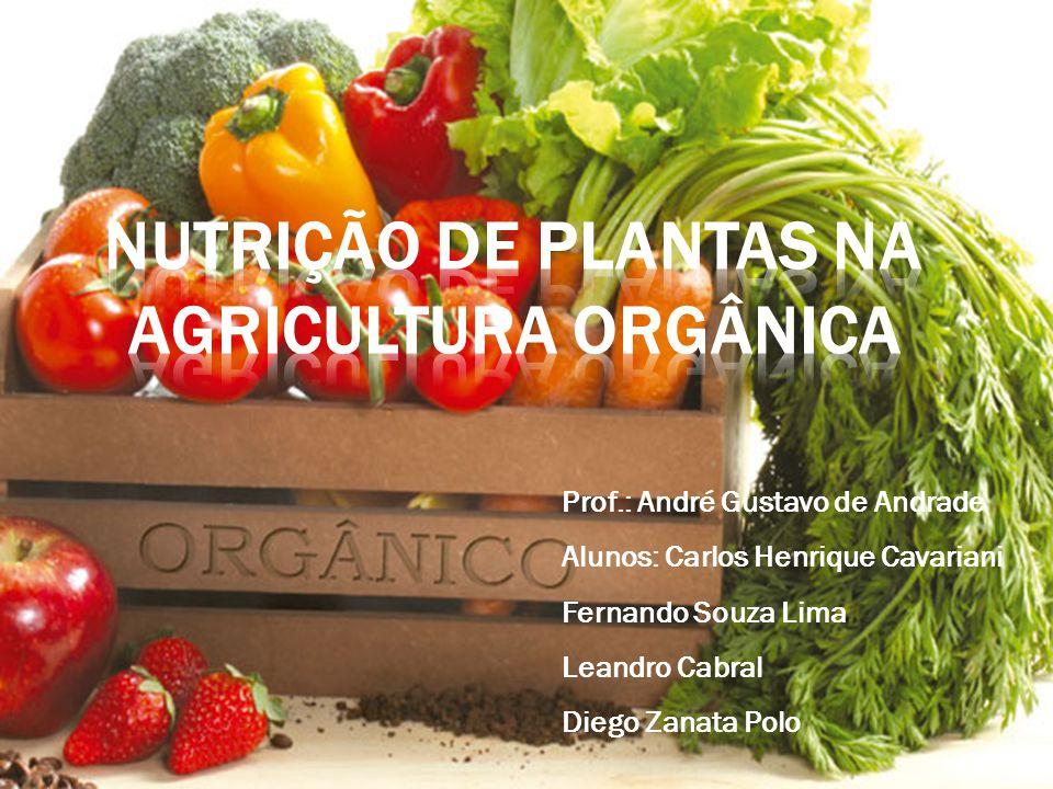 Agricultura orgânica é um sistema de produção que sustenta a saúde do solo, do ecossistema e das pessoas.