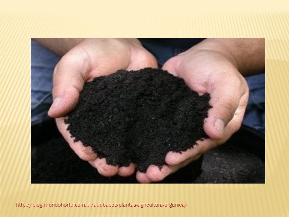 Adubos Inorgânicos São adubos obtidos a partir de extração de minerais ou do petróleo e posteriormente transformados pelas indústrias químicas.