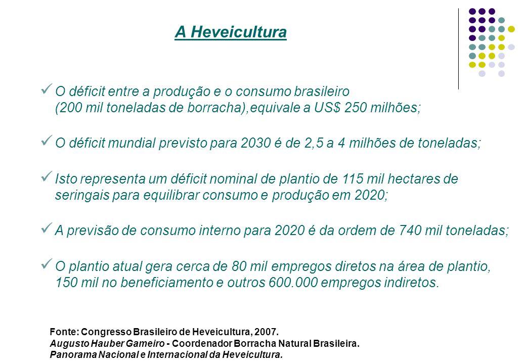 O déficit entre a produção e o consumo brasileiro (200 mil toneladas de borracha),equivale a US$ 250 milhões; O déficit mundial previsto para 2030 é d