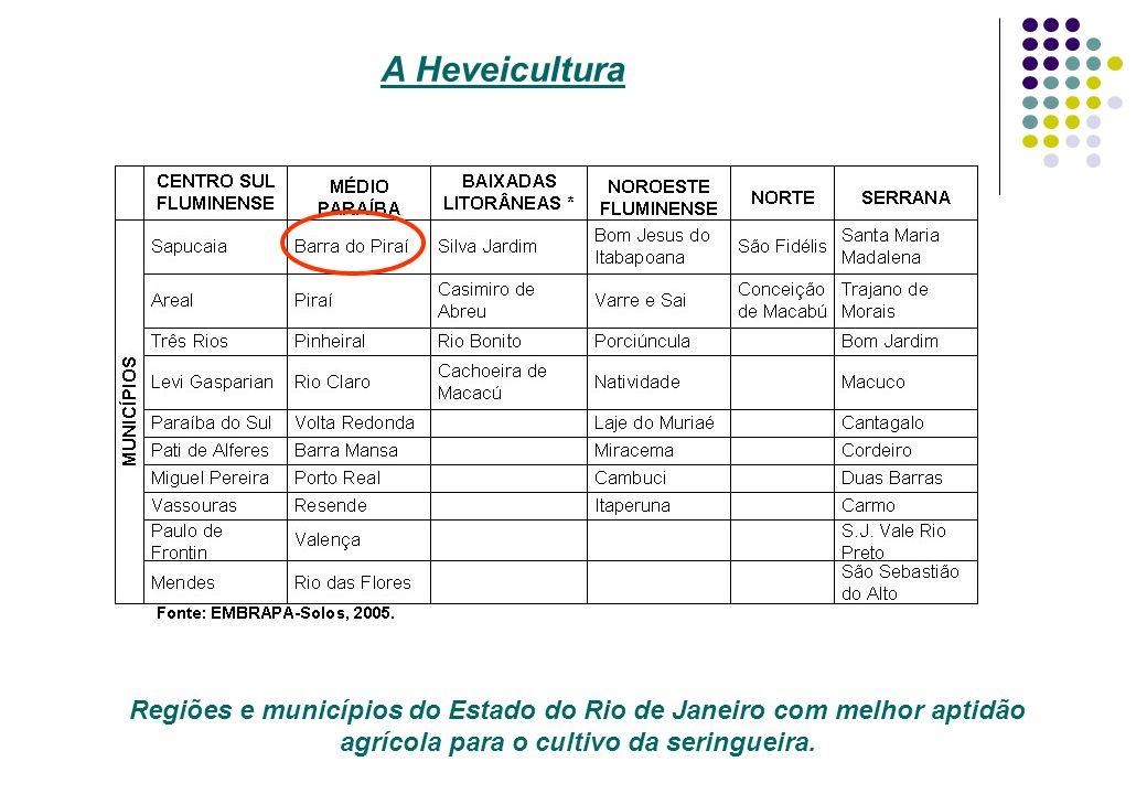 Regiões e municípios do Estado do Rio de Janeiro com melhor aptidão agrícola para o cultivo da seringueira. A Heveicultura