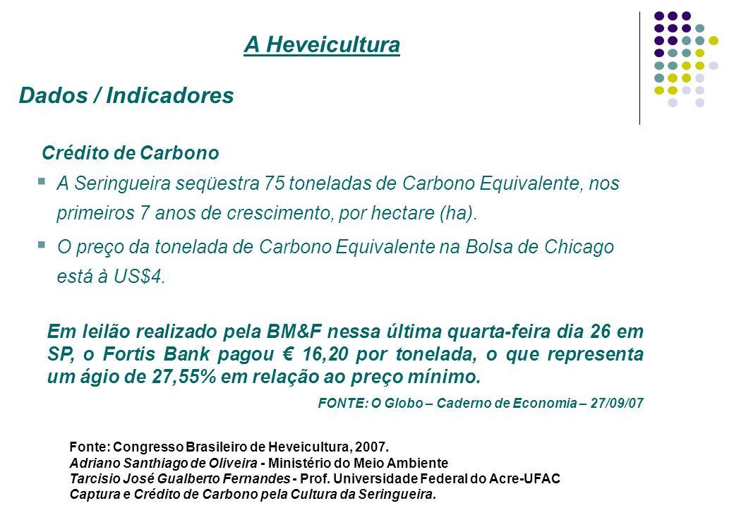 Crédito de Carbono A Seringueira seqüestra 75 toneladas de Carbono Equivalente, nos primeiros 7 anos de crescimento, por hectare (ha). O preço da tone