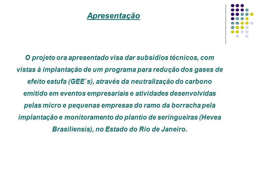 Apresentação O projeto ora apresentado visa dar subsídios técnicos, com vistas à implantação de um programa para redução dos gases de efeito estufa (G