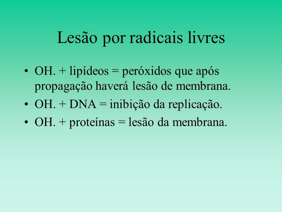 Lesão por radicais livres OH.+ lipídeos = peróxidos que após propagação haverá lesão de membrana.