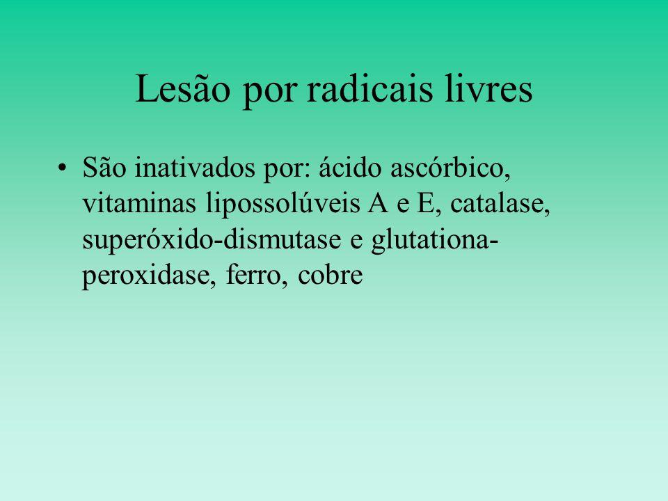 Lesão por radicais livres São inativados por: ácido ascórbico, vitaminas lipossolúveis A e E, catalase, superóxido-dismutase e glutationa- peroxidase, ferro, cobre