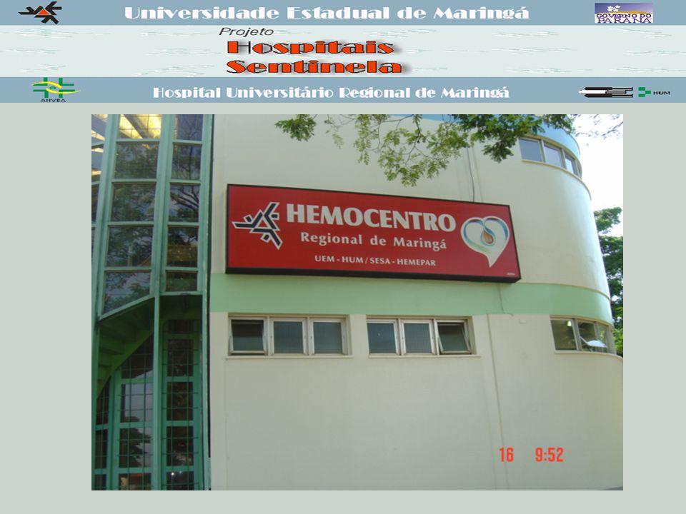 HEMOVIGILÂNCIA FACILITADORES.Portaria nº 1.376/93-MS;.