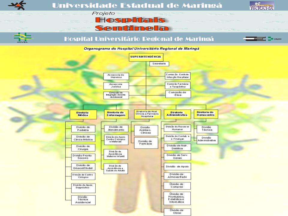 Projeto Hospitais Sentinela Adesão ao Projeto: Janeiro de 2002; Início das atividades do Gerente de Risco: Agosto de 2002; Contrato PNUD/ANVISA/UEM/HUM (Prestação de Serviço); Constituição de Comissão com representantes das áreas (Tecnovigilância, Hemovigilância e Farmacovigilância).
