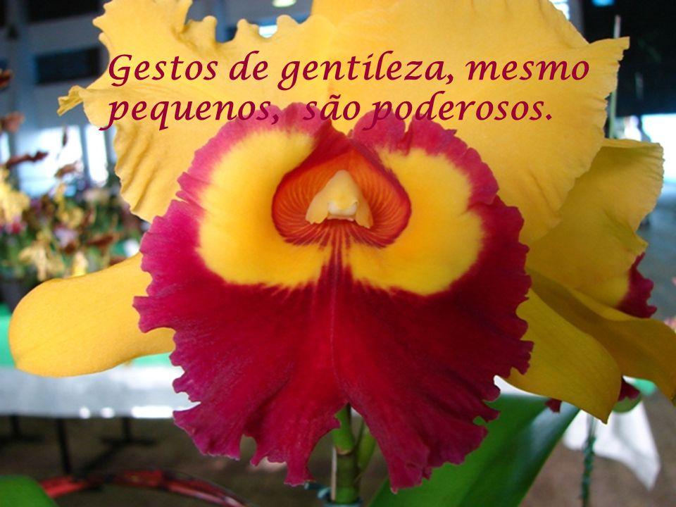 Gentileza Para Gabriel Chalita, jovem e emérito educador paulista, autor do livro Gentileza.
