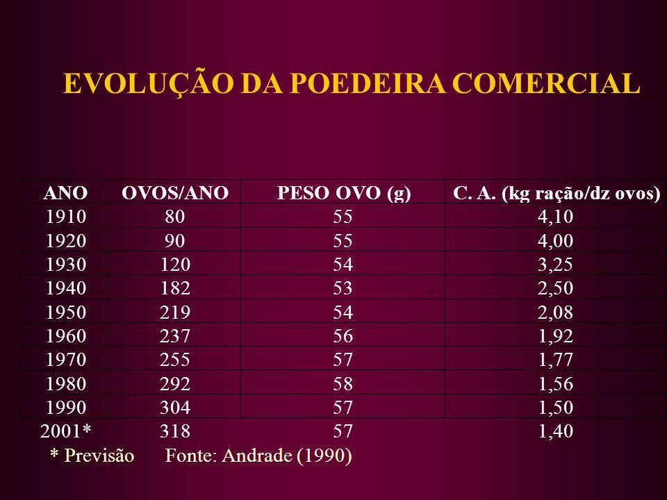 * Previsão Fonte: Andrade (1990) EVOLUÇÃO DA POEDEIRA COMERCIAL