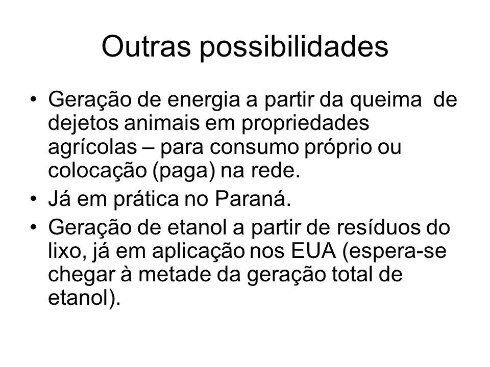 Outras possibilidades Geração de energia a partir da queima de dejetos animais em propriedades agrícolas – para consumo próprio ou colocação (paga) na rede.