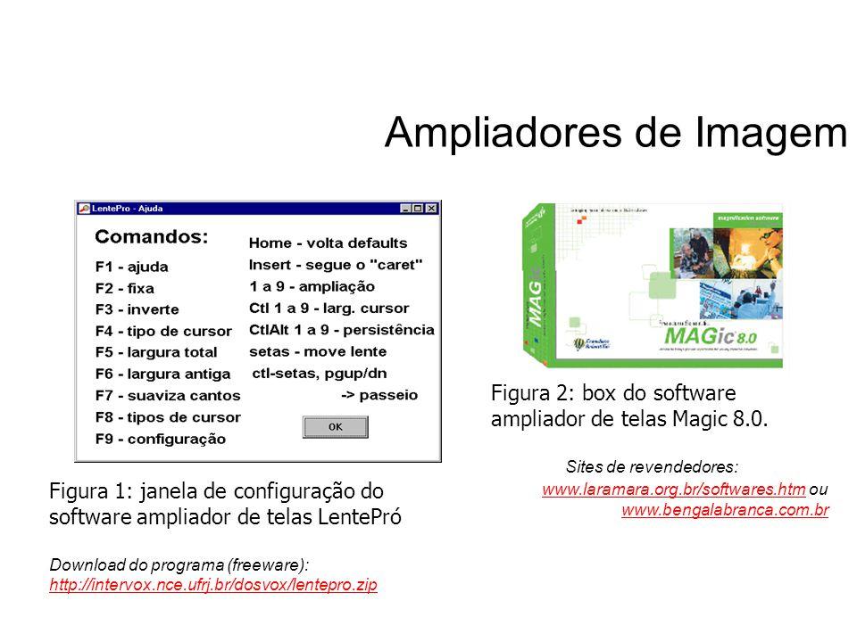 Ampliadores de Imagem Figura 1: janela de configuração do software ampliador de telas LentePró Download do programa (freeware): http://intervox.nce.uf